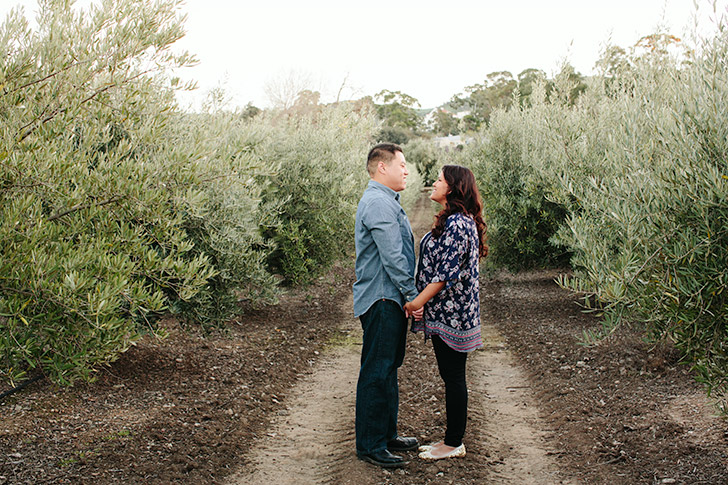 Olive Grove maternity session